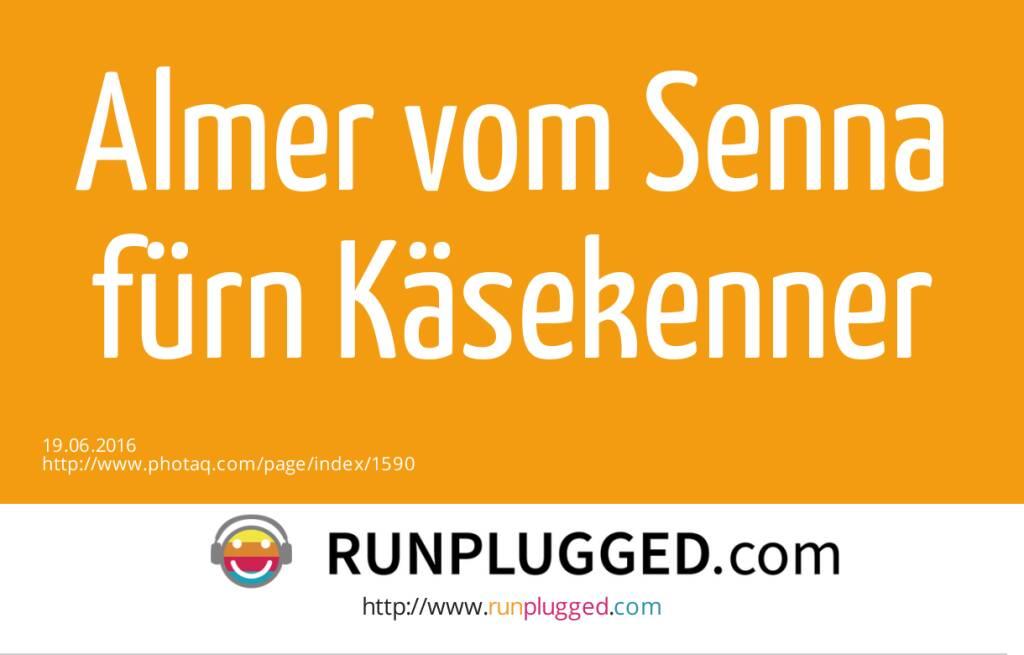 Almer vom Senna fürn Käsekenner  (19.06.2016)
