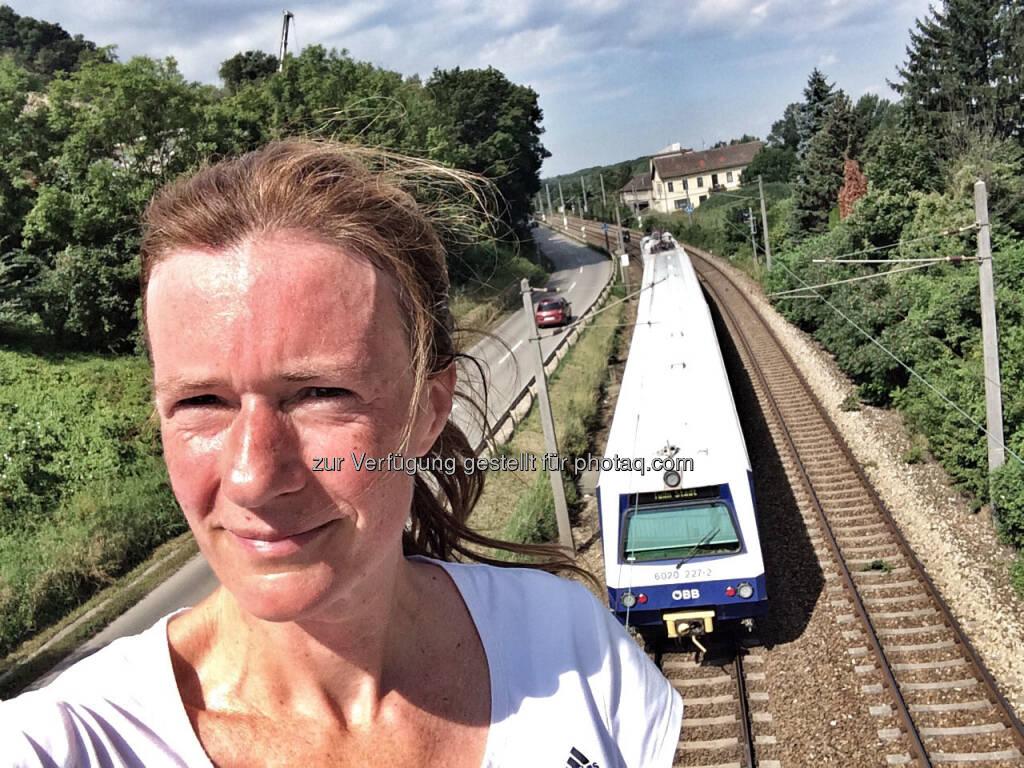 ÖBB, Zug, Bahn, hot (29.07.2016)