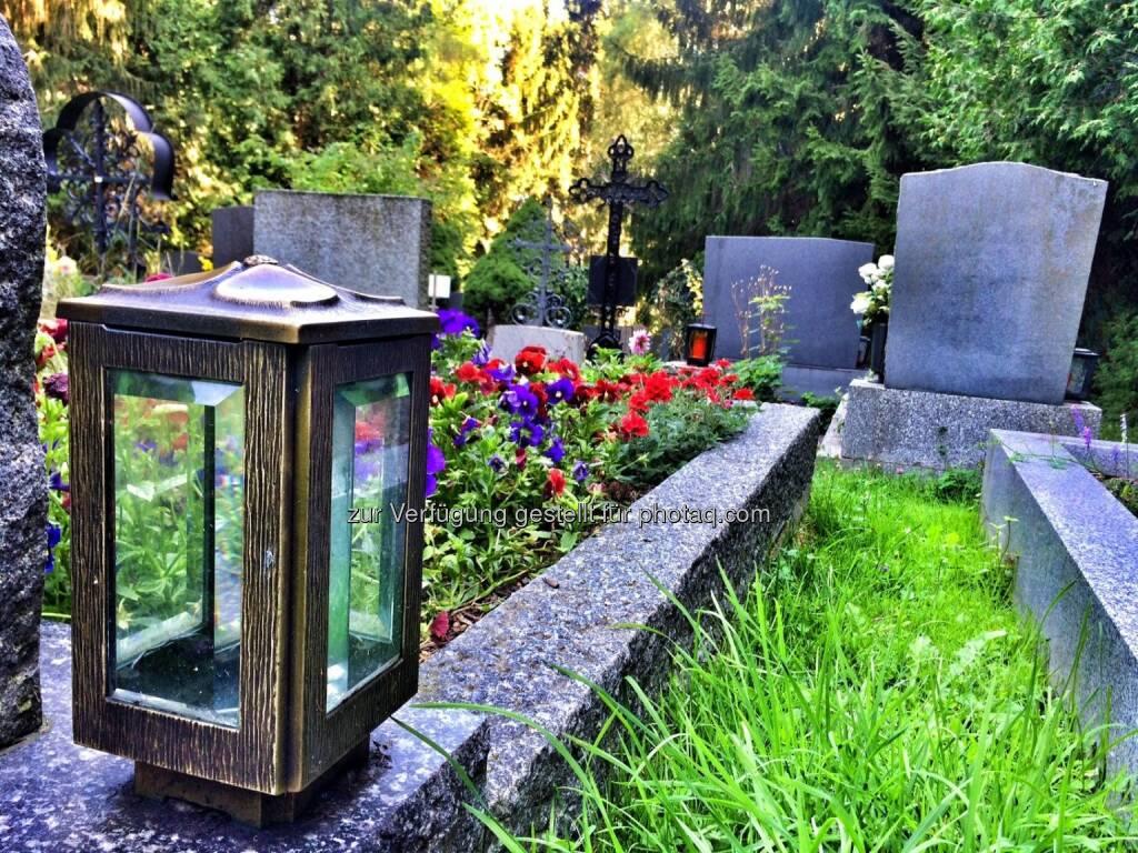 Friedhof Höflein mitten im Wald (31.07.2016)