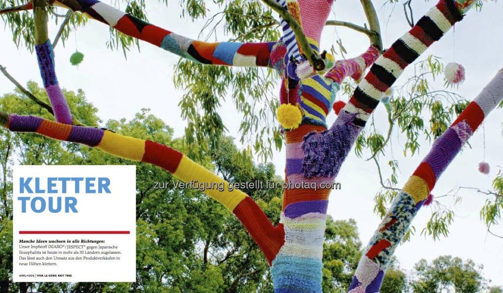Der Baum aus dem Intercell-Geschäftsbericht 2012 (c) Intercell (23.04.2013)