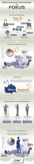 Infografik Unternehmerlandschaft in Österreich: Fotocredit: CRIF Österreich 2016 (c) moschdesign.com, © Aussender (08.08.2016)