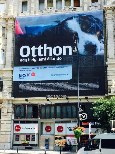 Erste Bank, Ungarn, Hund, © Josef Chladek/photaq.com (25.08.2016)