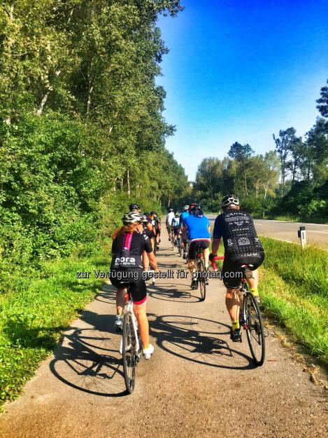 am Weg nach Neuaigen (28.08.2016)