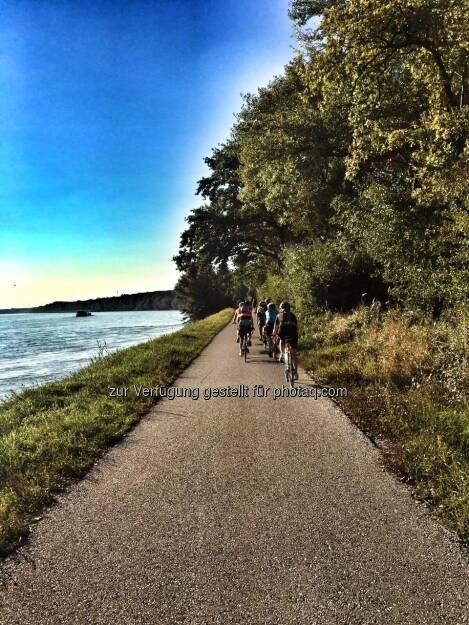 entlang der Donau (10.09.2016)