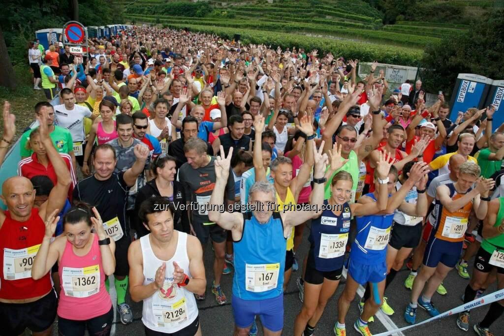 Anita Baierl beim Wachau Marathon (C) Bernhard Noll / Wachau Marathon (19.09.2016)