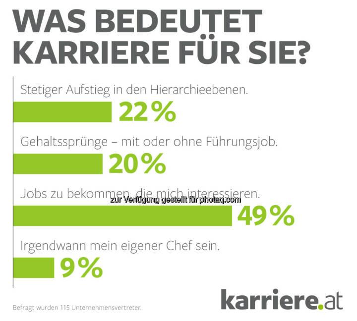 """Grafik """"Was bedeutet Karriere für Sie?"""" : Online-Umfrage, 115 Unternehmensvertreter : Fotocredit: karriere.at/Ecker"""