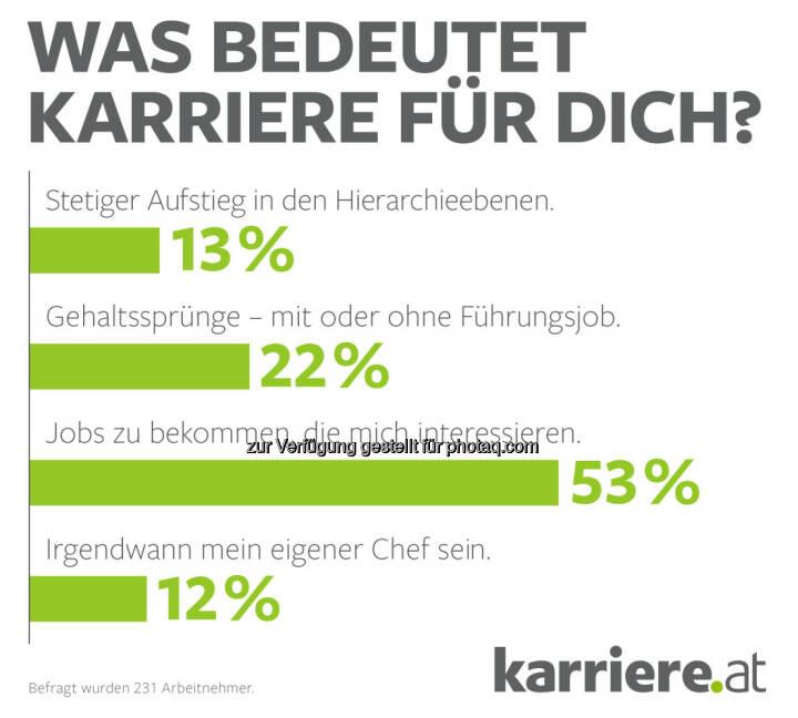 """Grafik """"Was bedeutet Karriere für Dich?"""" : Online-Umfrage, 231 Arbeitnehmer : Fotocredit: karriere.at/Ecker"""