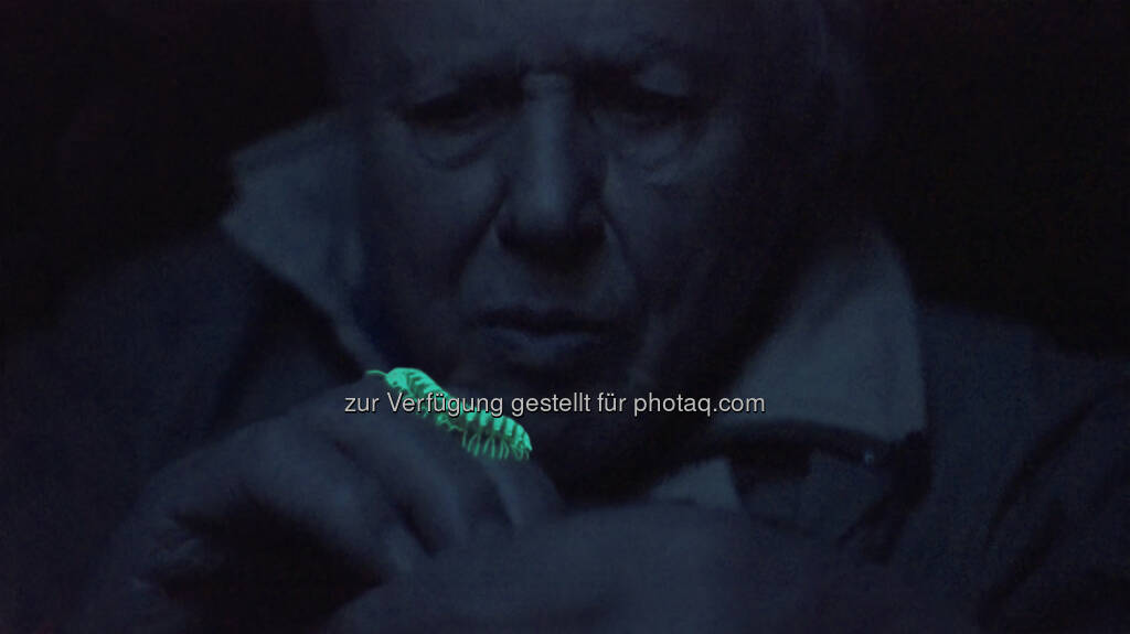 Sir David Attenborough in Leuchtfeuer des Lebens : Grand Helix Award bei den renommierten Science Media Awards in Boston für die Wiener Terra Mater Factual Studios :  Fotocredit: Terra Mater Ammonite Films_Martin Dohrn, © Aussendung (23.09.2016)