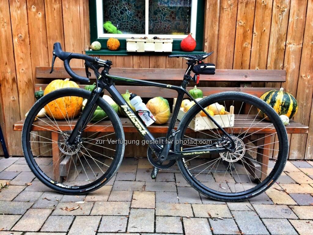 Crossbike, Trittwerk (09.10.2016)