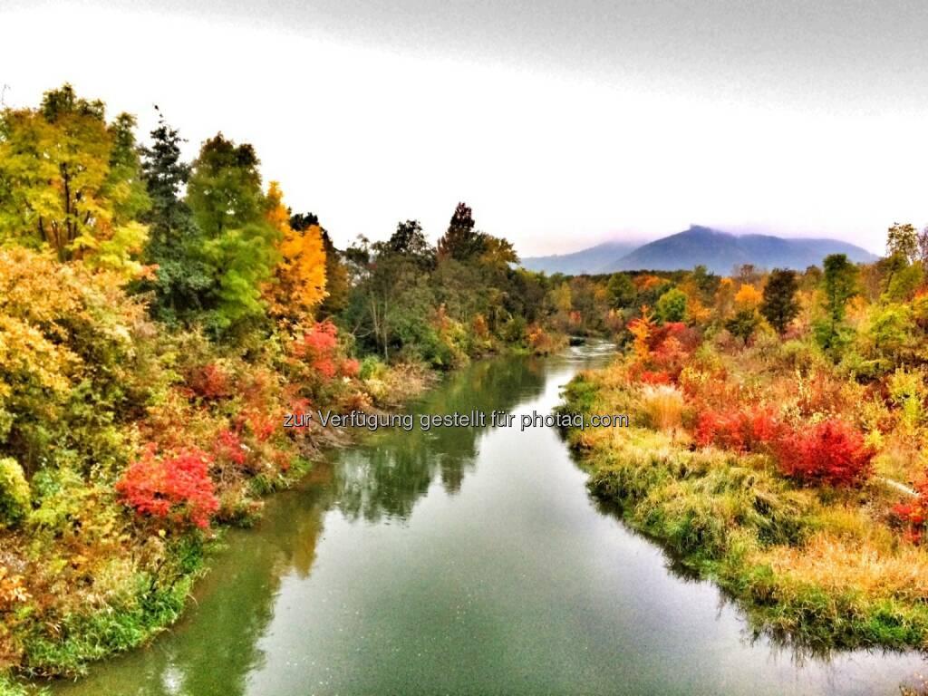 Herbstfarben (17.10.2016)