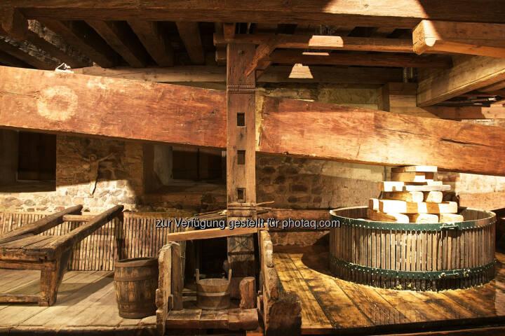 Weltgrößte Baumpresse (Nikolaihof, Wachau) : Weltgrößte Baumpresse wieder in Betrieb : Mithilfe der historischen Anlage wird der sogenannte Baumpresse-Wein gekeltert : Fotocredit: Nikolaihof Wachau/Lun