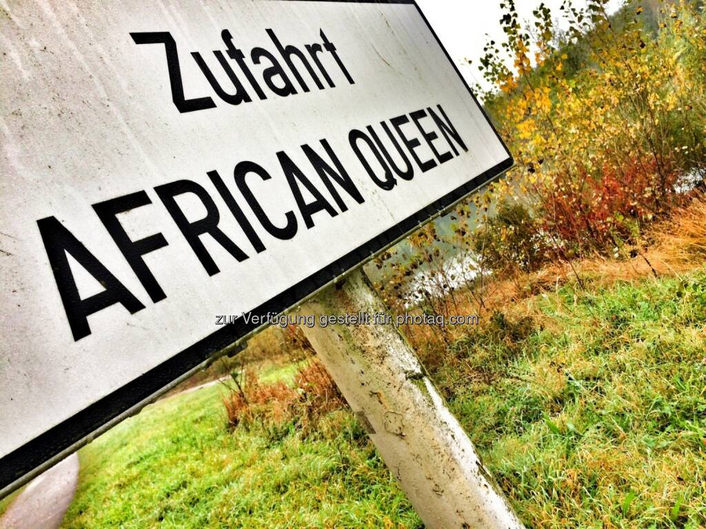 African Queen (21.10.2016)