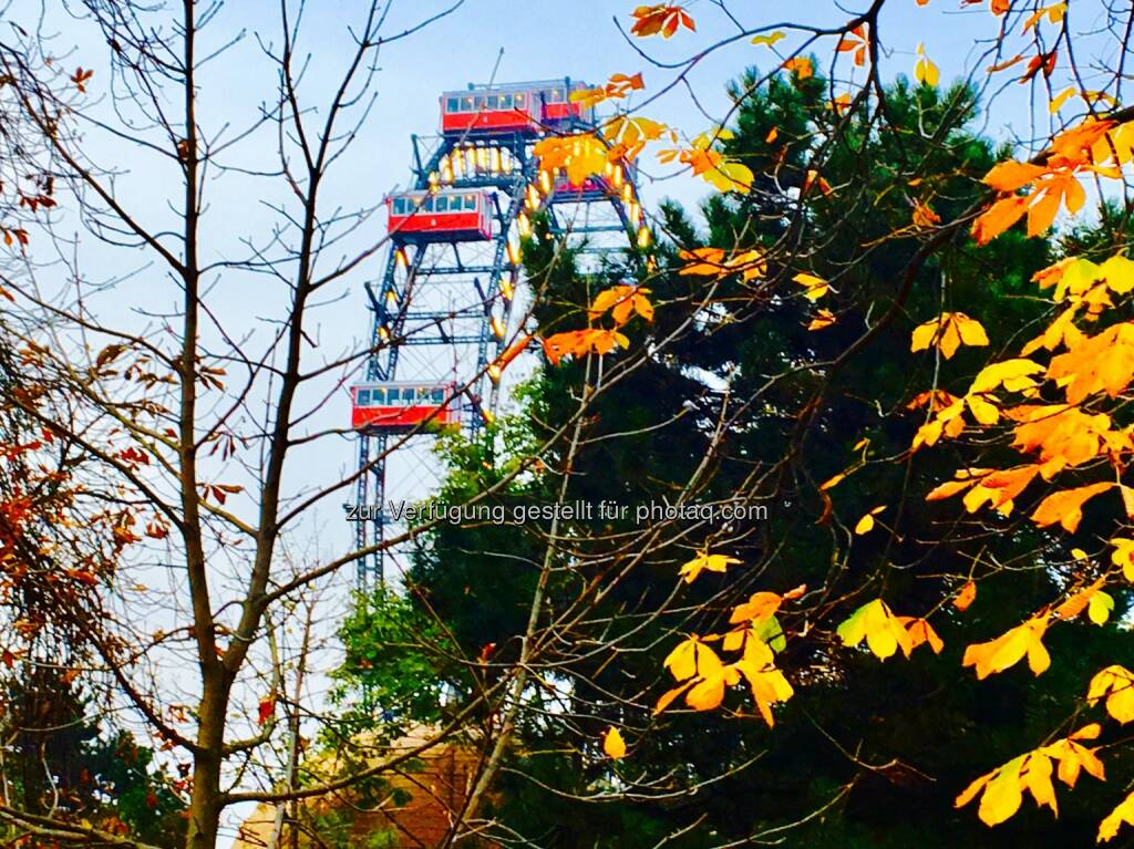 Lovely Prater! (06.11.2016)
