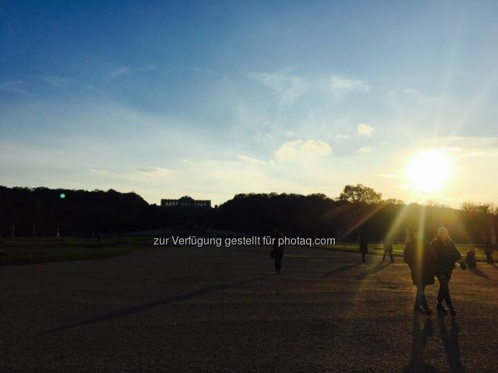 Sonne meets Schönbrunn