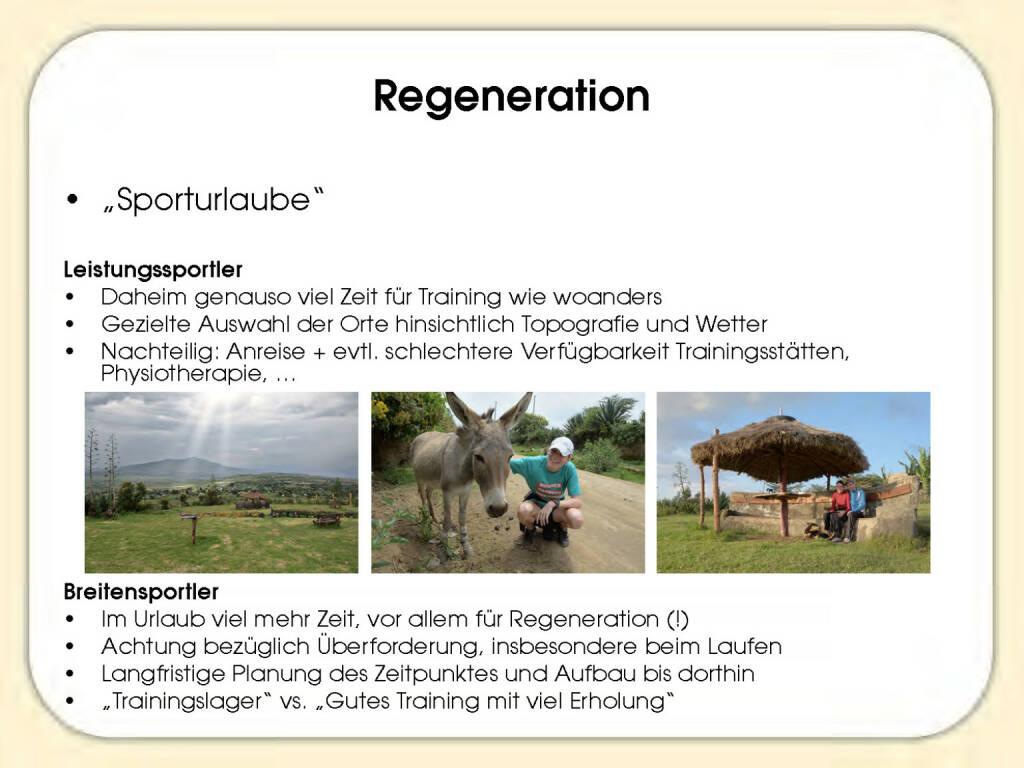 Regeneration - Sandrina Illes (15.11.2016)