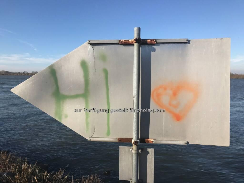 Hi, Herz (21.11.2016)