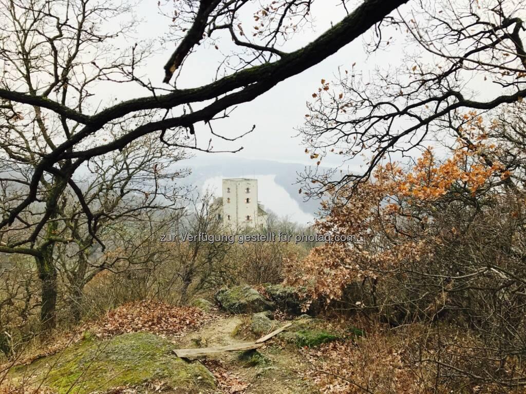 Burg Greifenstein (26.11.2016)