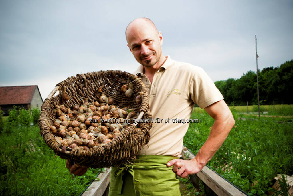 Der Wiener Landwirt Andreas Gugumuck züchtet Weinberg-Schnecken und beweist: In alten landwirtschaftlichen Traditionen steckt oft großes innovatives Potenzial. Es braucht nur die richtige Idee und einen kreativen Kopf, der sie auf die Teller von heute bringt (c) Landwirtschaftskammer Wien (07.05.2013)