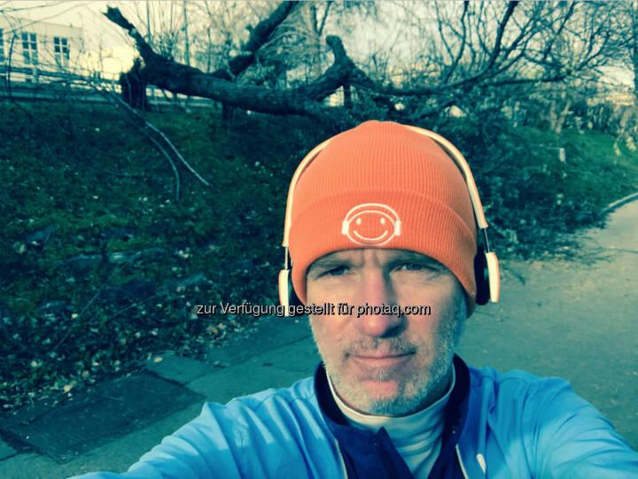 Umgestürzter Baum Donaukanal