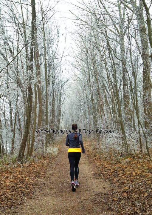Monika Kalbacher, kalt, Wald
