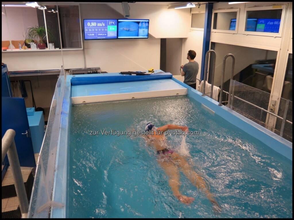 Schwimmkanal (15.01.2017)