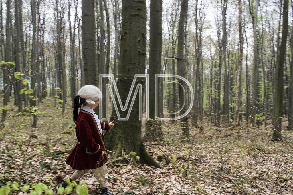 Mozart im Wienerwald, © Martina Draper (10.05.2013)