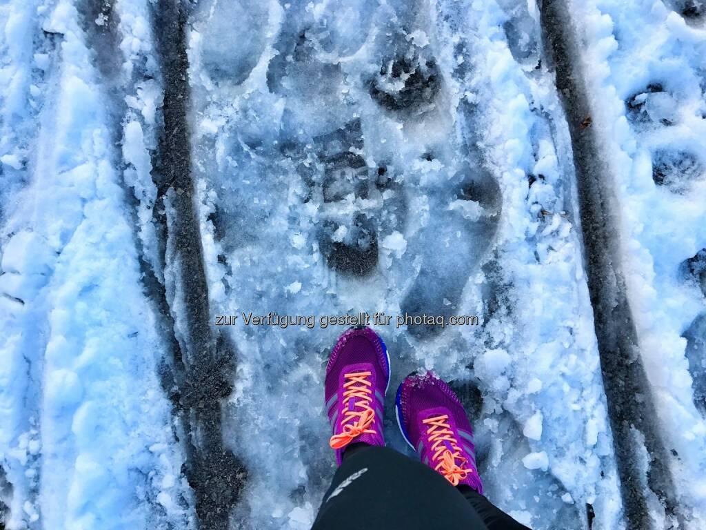 laufen, Schnee, Spur (04.02.2017)