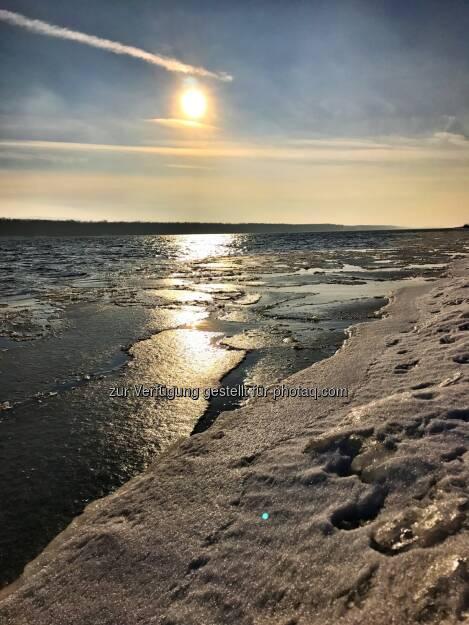 Donau, Eis, Eisscholle, Scholle (04.02.2017)