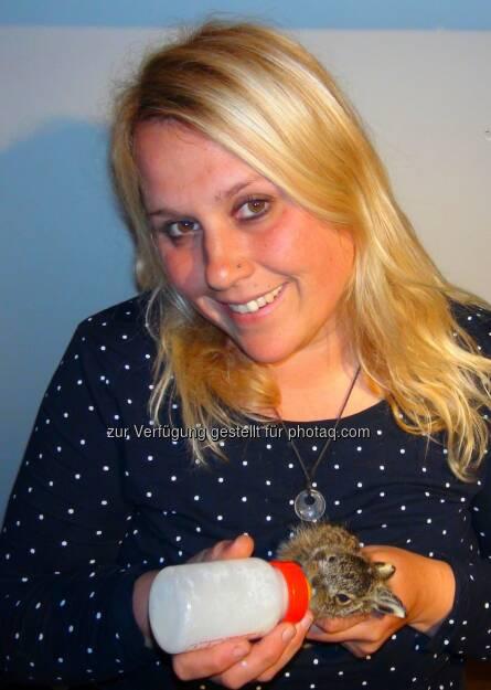"""Verein Pfotenhilfe: PFOTENHILFE warnt vor übereilter Wildtier""""rettung"""": drei Hasenbabys an einem Tag in PFOTENHILFE gebracht (Fotocredit: PFOTENHILFE), © Aussender (21.03.2017)"""