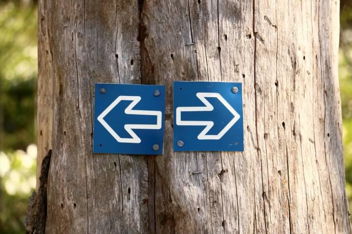 Links, Rechts, Entscheidung, Wahl (Bild: Pixabay/683440 https://pixabay.com/de/baum-stamm-wald-pfeile-brown-746617/ )