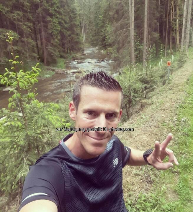 Werner Schrittwieser, Wald, yes!