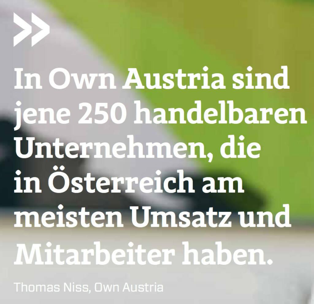 In Own Austria sind jene 250 handelbaren Unternehmen, die in Österreich am meisten Umsatz und Mitarbeiter haben. (Thomas Niss, Own Austria) (12.06.2017)