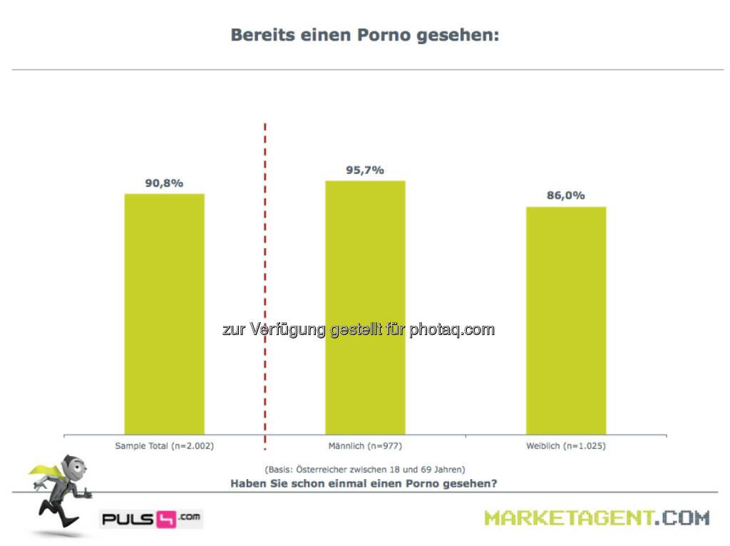 Bereits einen Porno gesehen (Bild: puls4.com/marketagent.com) (17.05.2013)