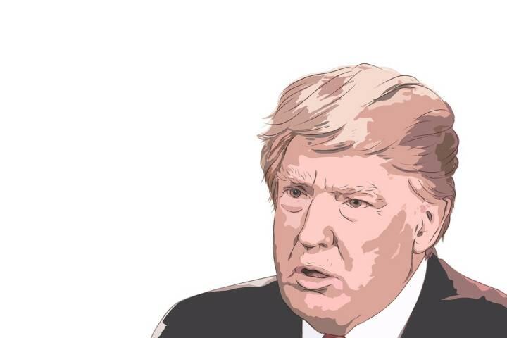 Donald Trump (Bild: Pixabay/Owantana https://pixabay.com/de/donald-trump-2333743/ )