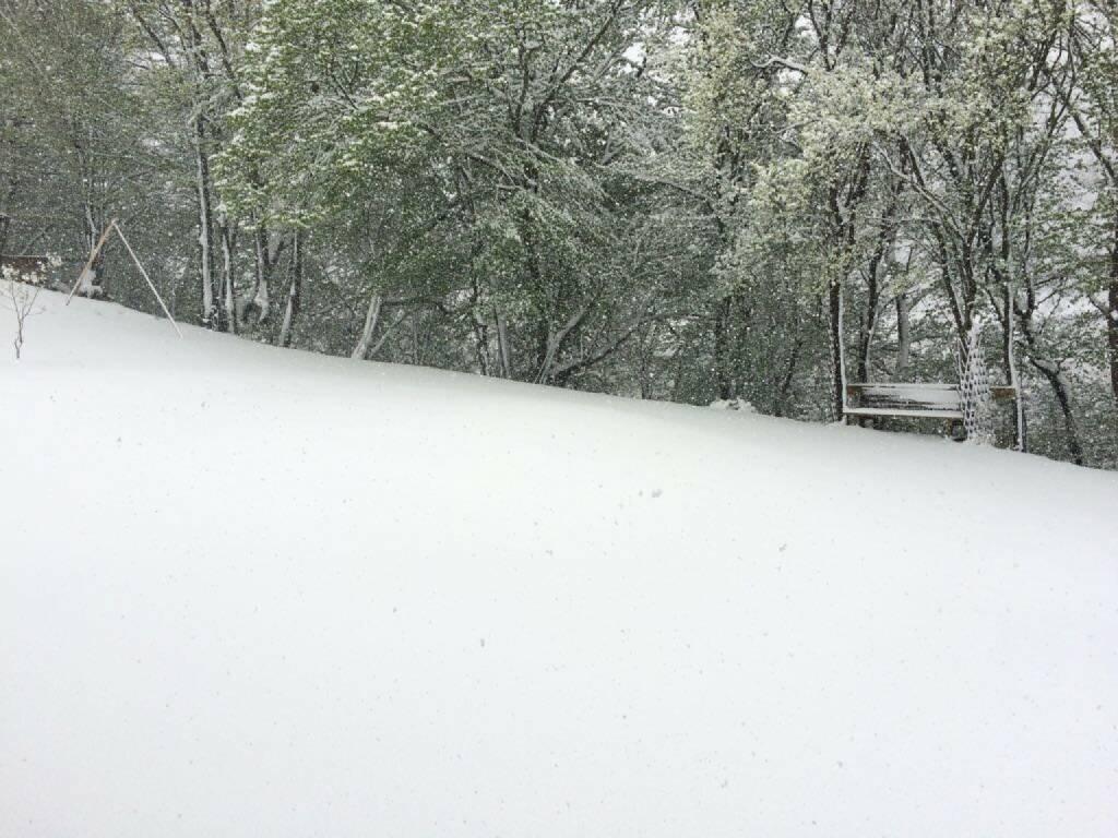 Schnee, weiß, Winter, © diverse photaq (25.08.2017)