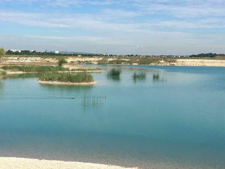 Wasser, See, Seestadt Aspern, Donaustadt