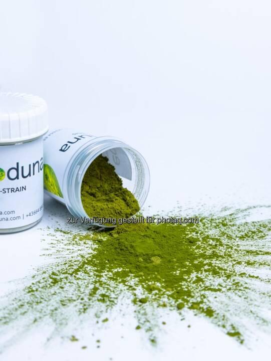 ecoduna, Algen, Algenproduktion; Foto: ecoduna