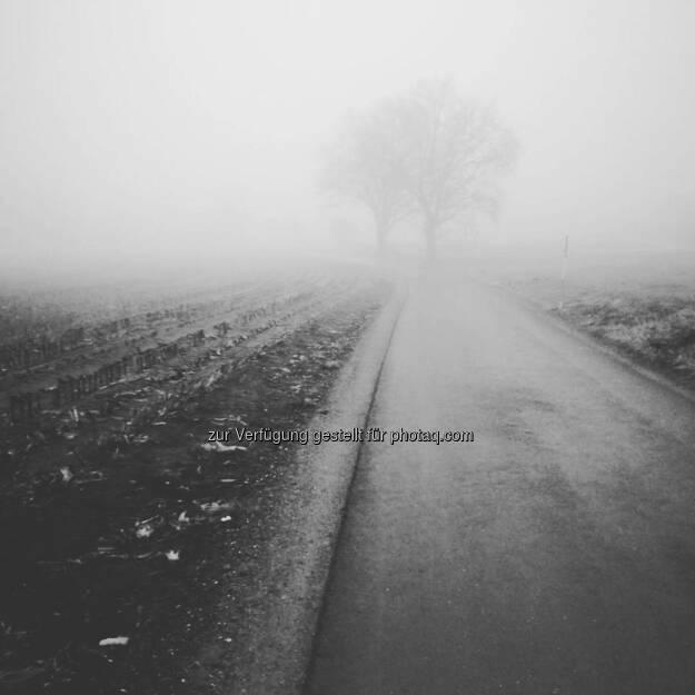 Nebel, © Tino Griesbach (10.01.2018)