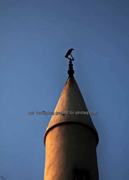 Minarett, Krähe; Türkei, Istanbul, © Herlinde Wagner (02.06.2013)