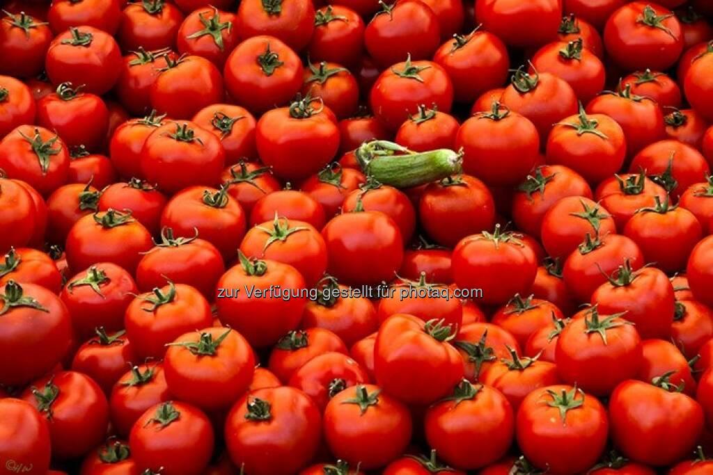 Paradeiser, eine Gurke; Türkei, Istanbul, © Herlinde Wagner (02.06.2013)