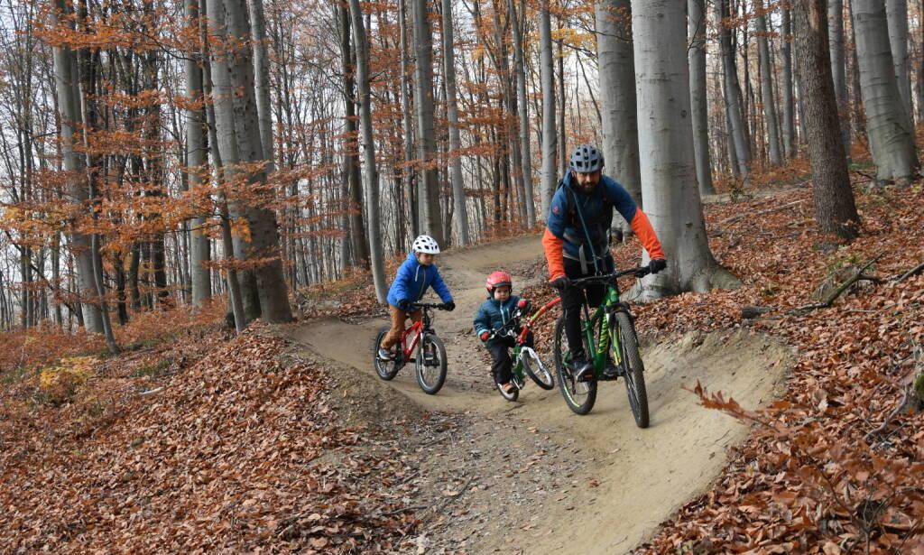 Die erste Crowdfundingkampagne Österreichs zur Finanzierung einer Mountainbikestrecke erfährt guten Zuspruch; Fotocredit:Trail-Affairs, © Aussendung (16.02.2018)
