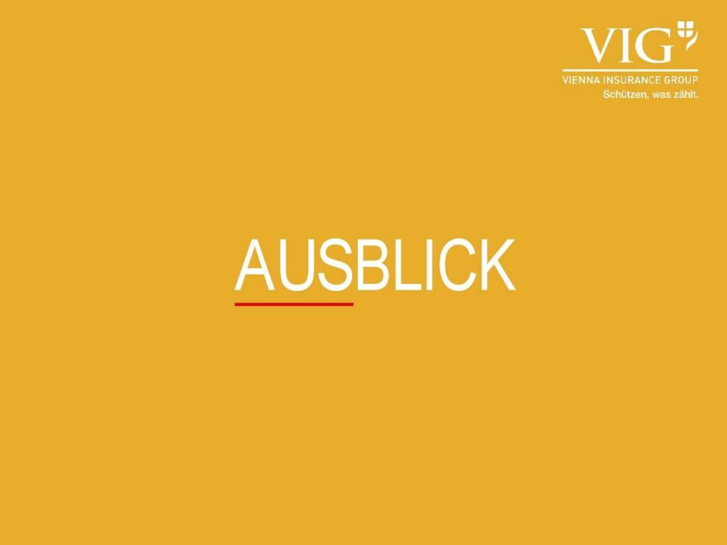 VIG Unternehmenspräsentation - Ausblick (20.02.2018)