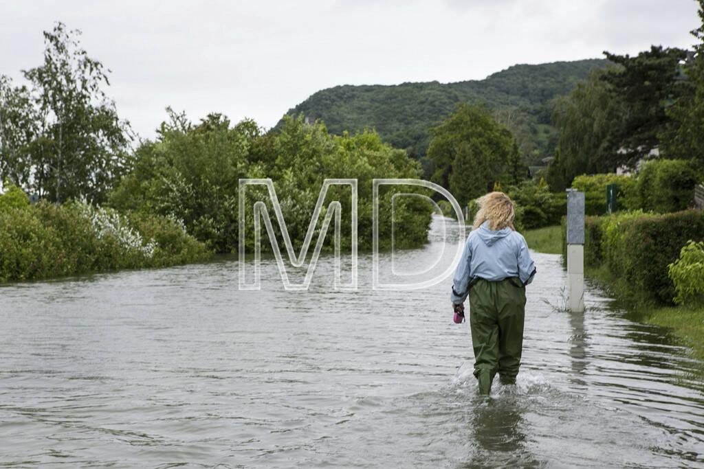 Hochwasser, Greifenstein, Frau, © Martina Draper (03.06.2013)