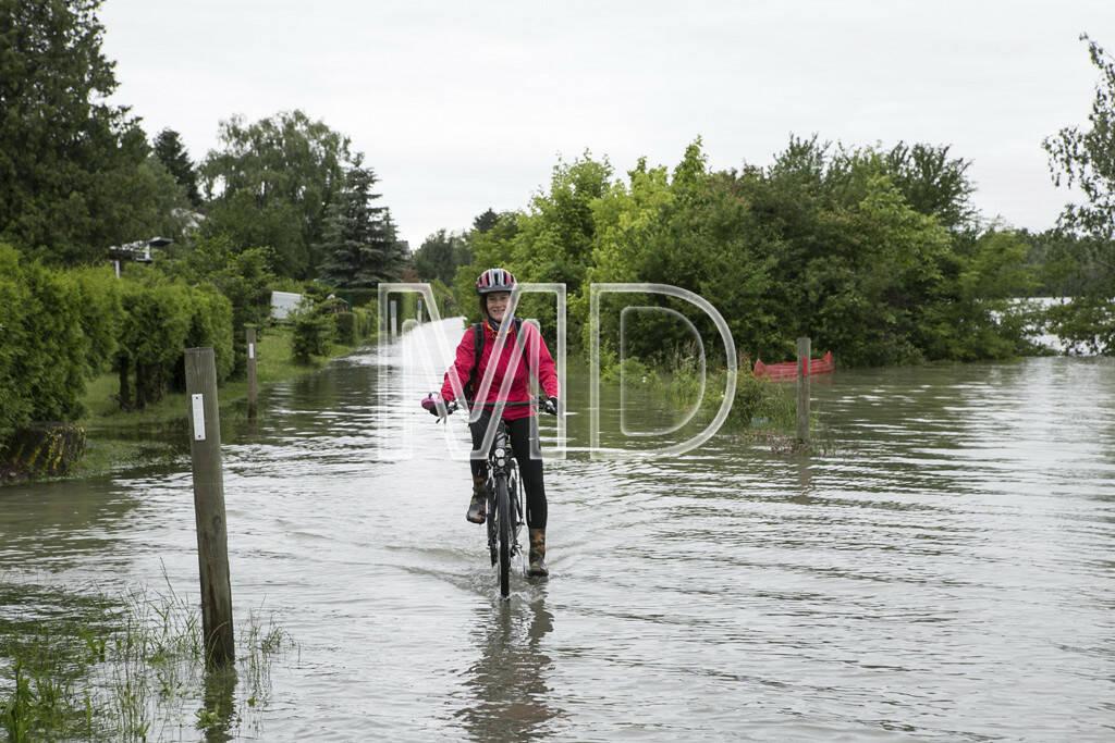Hochwasser, Greifenstein, Martina Draper, © Martina Draper (03.06.2013)