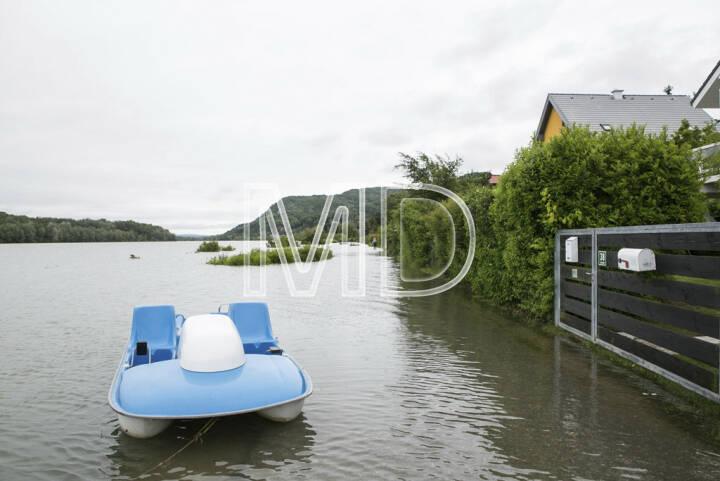 Hochwasser, Greifenstein, Tretboot