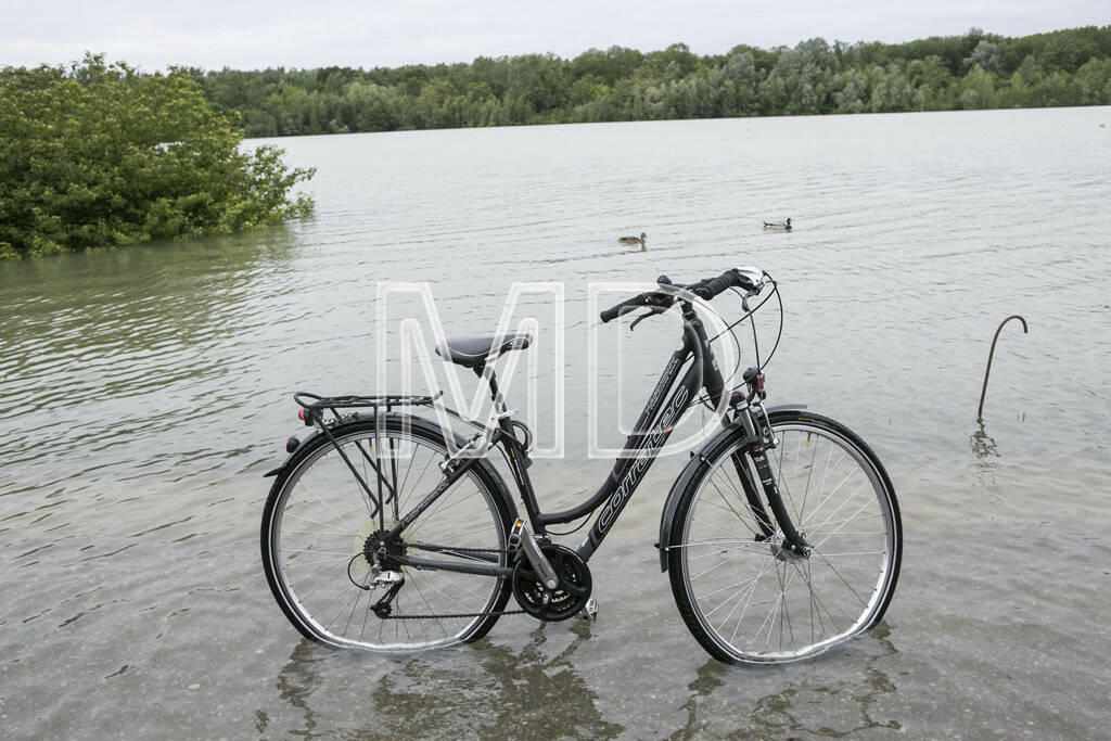 Hochwasser, Greifenstein, Fahrrad, © Martina Draper (03.06.2013)