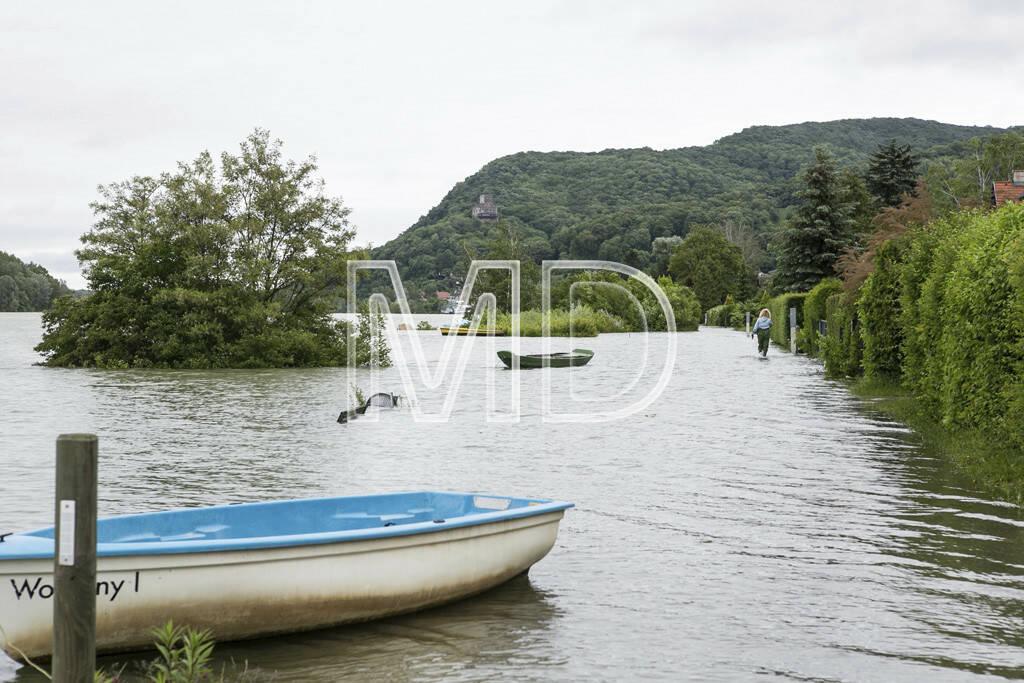 Hochwasser, Greifenstein, Boot, © Martina Draper (03.06.2013)