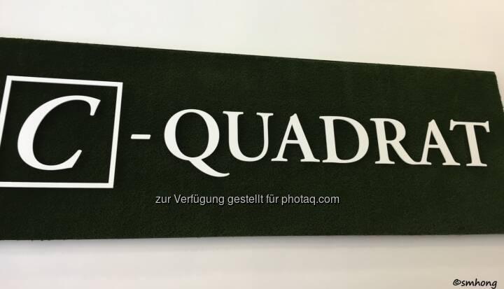 C-Quadrat-Logo auf künstlichem Moos, sehr gefällig, Design erinnert sehr stark an Quadriga. Oder umgekehrt. HV 4.5.18