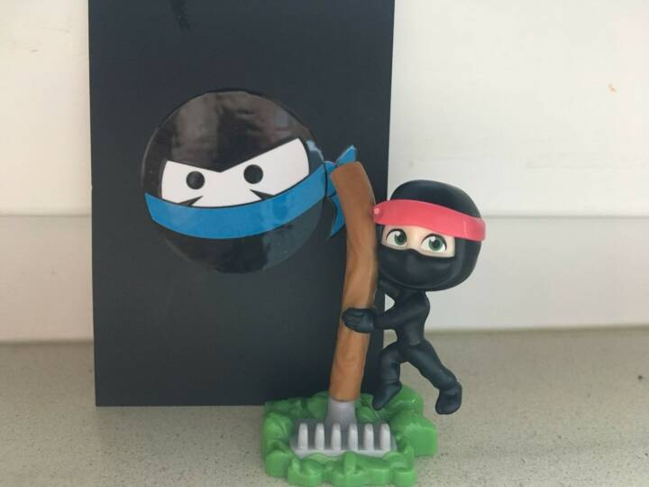 Growth Ninja im Überraschungsei
