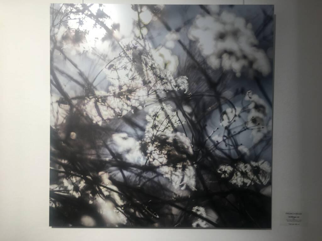 Friedrich Erhart, Lichtfänger, Pigment-Print auf Alu-Dipond, weitere Werke unter www.friedrich-erhart.com (30.05.2018)